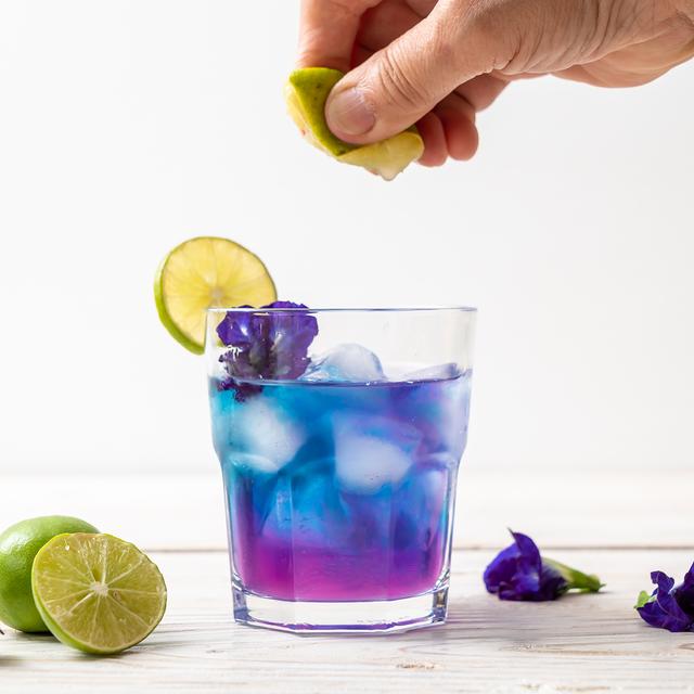 【熊本県産】幸せの青いお茶~バタフライピーティー~10包