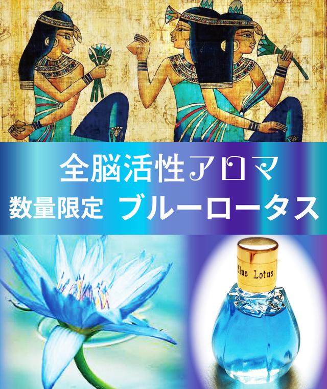 【全脳活性アロマ】 ~ブルーロータス~エジプト産最高品種・希少数量
