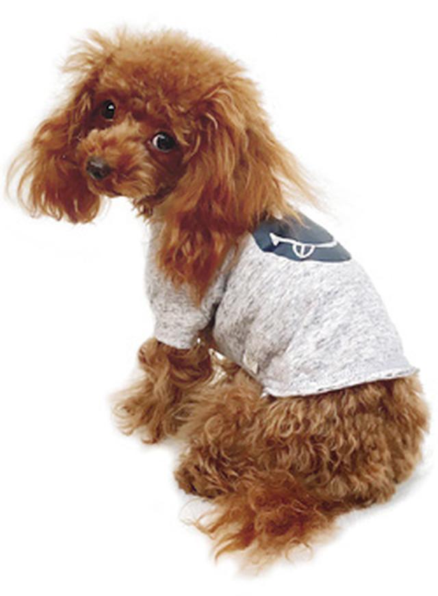 犬の生活 17SS サーフTシャツラグラン スマイリー