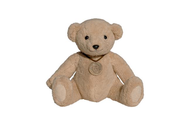 hug me | organic teddy bear