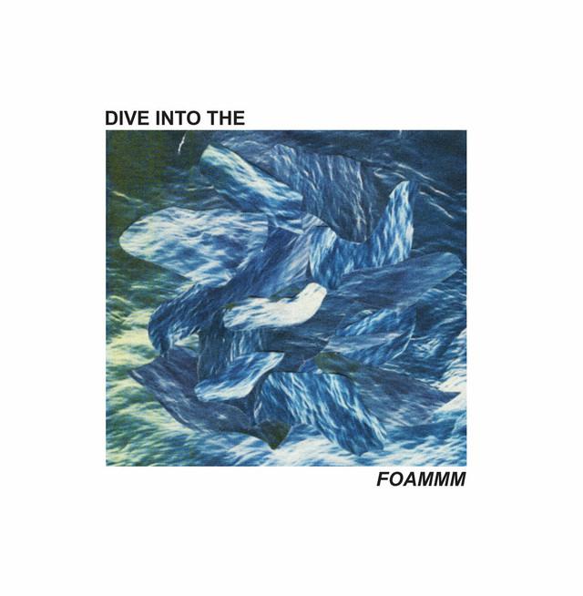 FOAMMM / Dive Into the FOAMMM(Ltd 12inch EP)