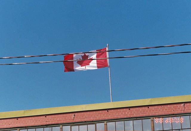 カナダからのお手紙