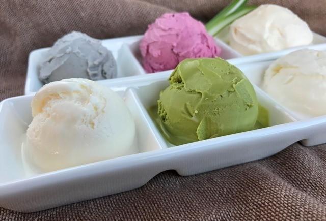 アイスクリーム18個セット【6種類各3個】