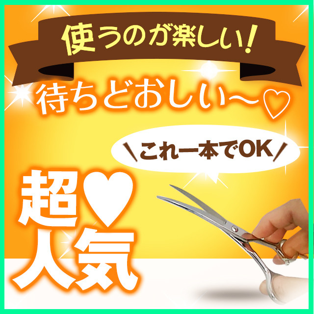 美容師用カットシザー・アールシザー・カーブ刃・メガネハンドル・(通常価格:38,800円)