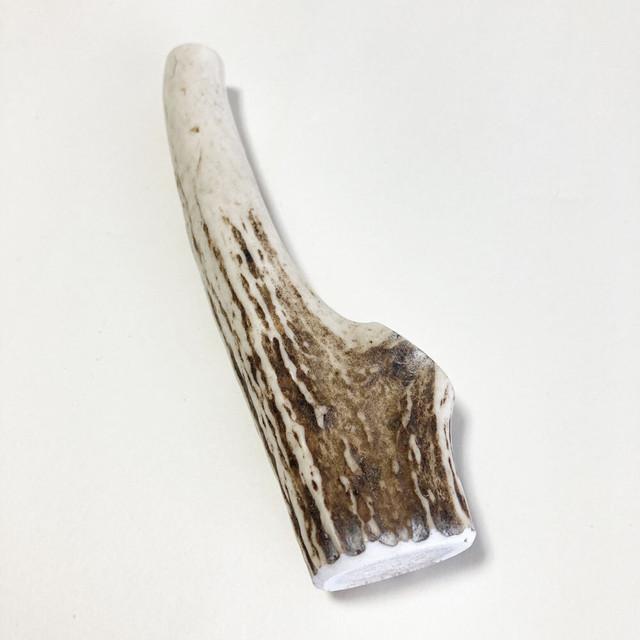 かみかみおもちゃ エゾシカのツノ 約13cm ふりかけパウダー付