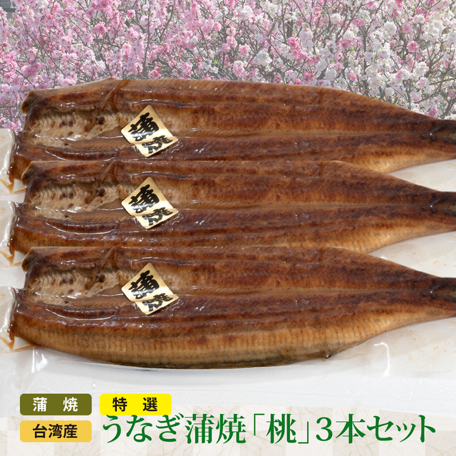 SALE特選 台湾産 うなぎ蒲焼(桃3本セット)