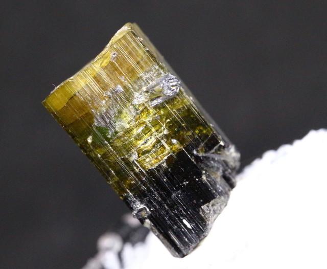 カリフォルニア産 ブラックグリーントルマリン バイカラー 4g ケース入り 原石 鉱物 標本 T004 天然石