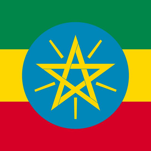 エチオピア ナチュラル精製  イルガチェフェ 100g
