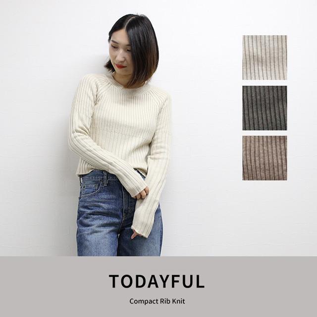 TODAYFUL |Compact Rib Knit  (11820552)