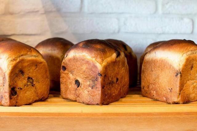 オーガニックレーズン食パン 2個セット