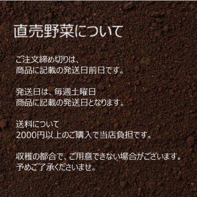 新鮮な秋野菜 : つるむらさき 約200g 9月の朝採り直売野菜 9月14日発送予定