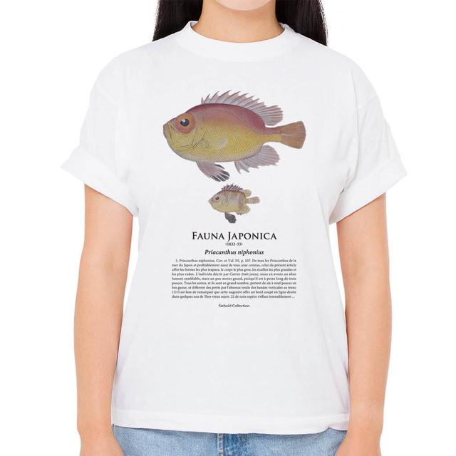 【チカメキントキ】シーボルトコレクション魚譜Tシャツ(高解像・昇華プリント)