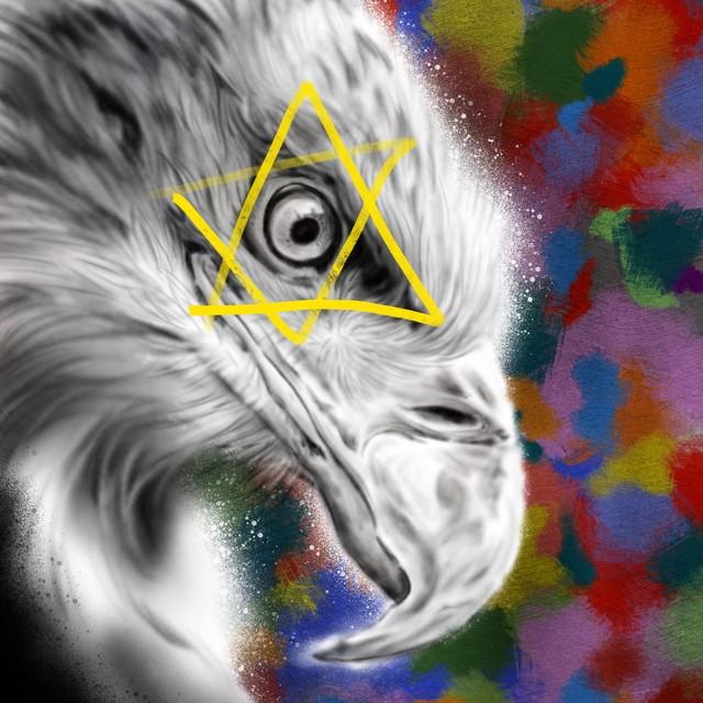 絵画 インテリア アートパネル 雑貨 壁掛け 置物 おしゃれ 鷲 目 現代アート ロココロ 画家 : nob 作品 : EagleEye