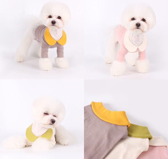 creamy kara t-shirt S ~ XL  /  犬服 春夏 新作 可愛い 犬の服 トップス 長袖 ドッグウェア ストレッチ 小型犬 中型犬 ペット