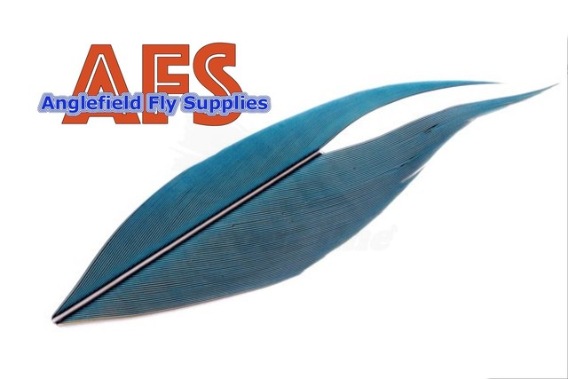 【 AFS 】Macaw Side Tail Blue-Yellow