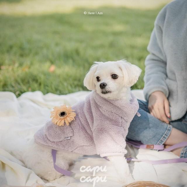 «予約»«ペットサイズ»«Here I am» kinder fleece キンダーフリース ペット