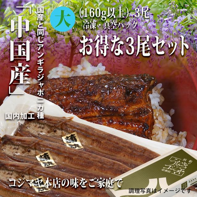 SALE:中国産うなぎ蒲焼(大3尾セット) 【冷凍・真空パック】国内調理加工