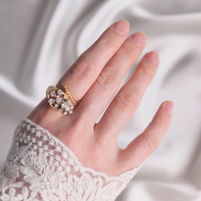The Princess Ring Collection: 5th Edition 4