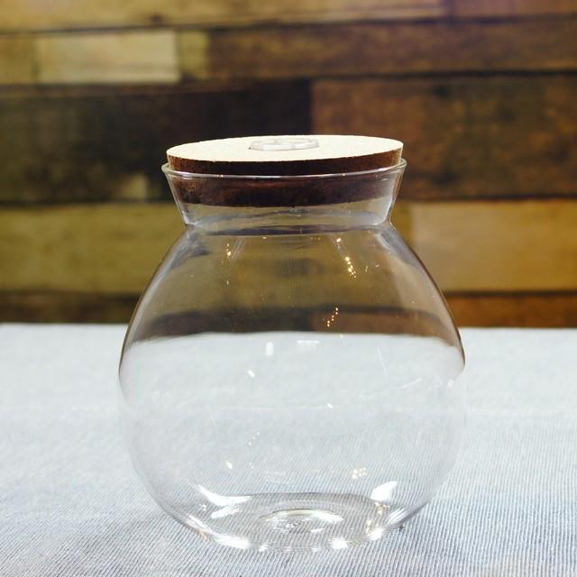 【L】LED付き ガラスボトル コルク蓋 苔テラリウム ボトルアクアリウム