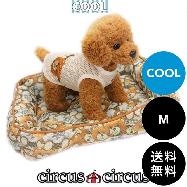 circus circus(サーカスサーカス)Toy Bear COOL BED 涼感加工 Mサイズ 送料無料