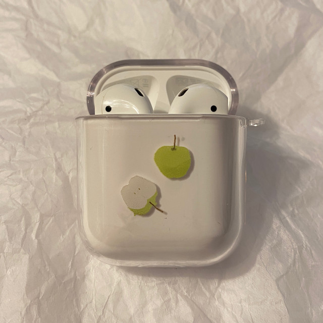 autumn Airpods case(original/pro)