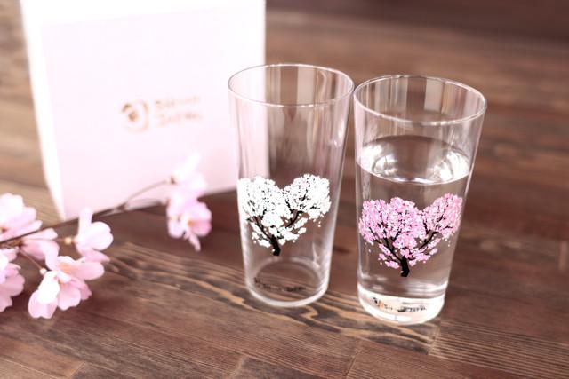 【cs-04s】『冷感桜』『タンブラーペアセット 』          *春 桜 グラス 花見 ペアセット 贈り物 温度 変化 日本酒 乾杯 記念 ギフト プレゼント お祝い