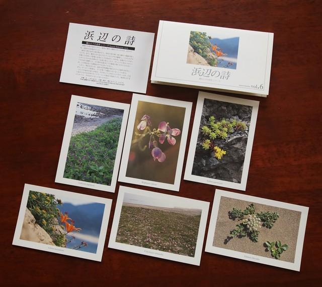 ポストカード【SeasonSelection vol.6 浜辺の詩】