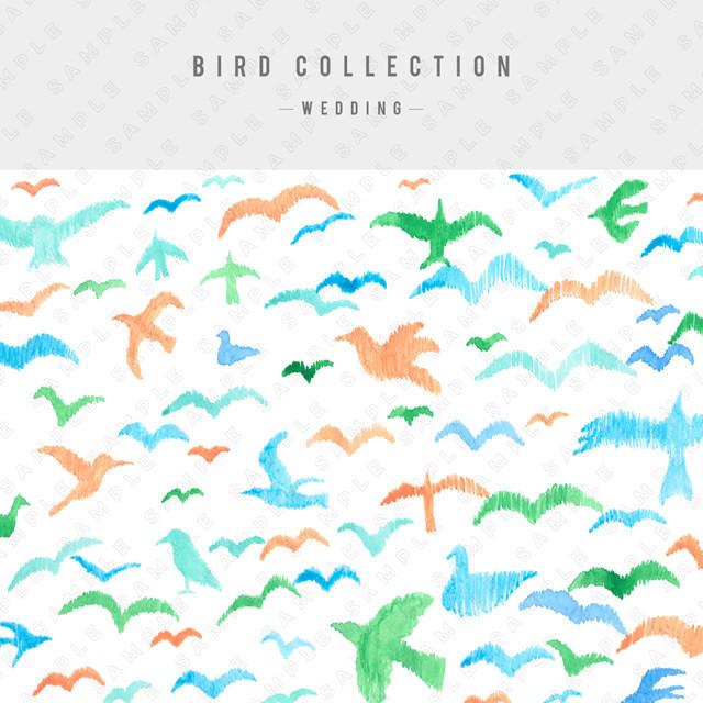 【ウェディング】BIRD COLLECTION