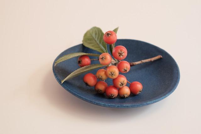 [shell@3 ラピス] 磁器 豆皿 直径8.5cm