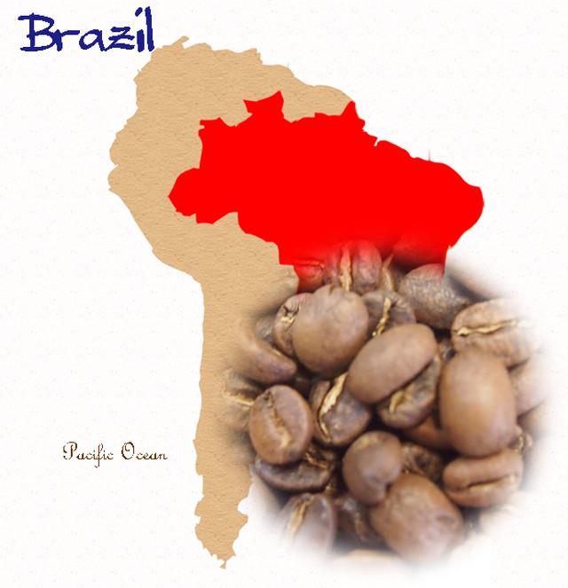 ブラジルサントス№2 200g