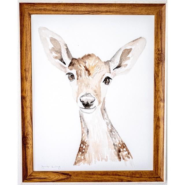 Dear Baby Deer