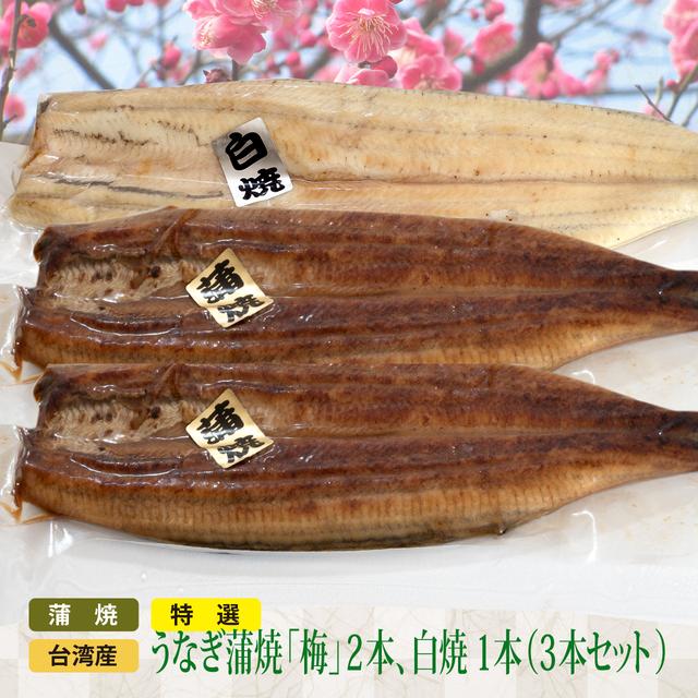 SALE特選 台湾産うなぎ蒲焼(梅)2、白焼 1 (3本セット)