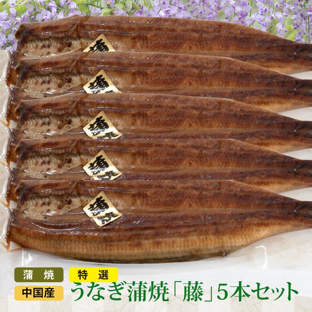 特選 中国産 うなぎ蒲焼(藤5本セット)国内調理加工