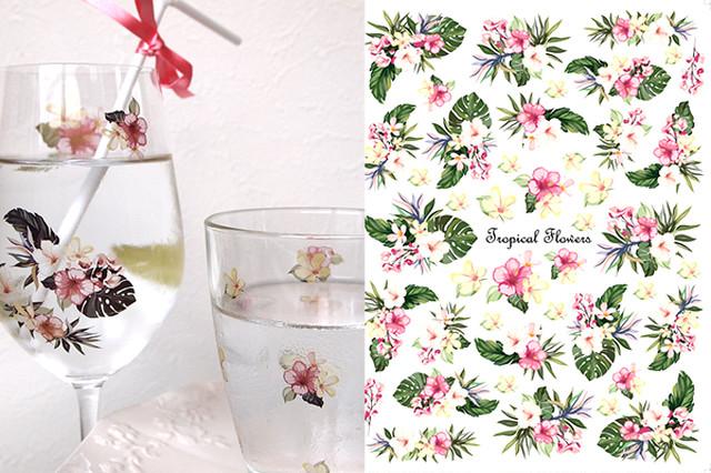 【ガラス用】 水彩 トロピカルフラワー TropicalFlowers Aサイズ(ポーセリンアート用転写紙 南国花)