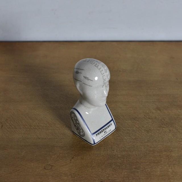 Phrenology Head 【S】 / フレノロジー ヘッド〈オブジェ・置物・人体模型・解剖〉