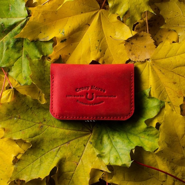 123 Leather Business &Credit Card Holder / wallet Autumn Red