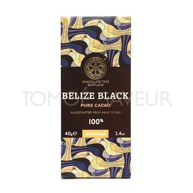 【※ブルームのためご自宅用のみ】チョコレートツリー ベリーズブラック100%