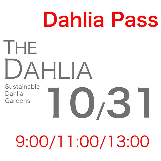10月31日「THE DAHLIA」摘み採り園チケット