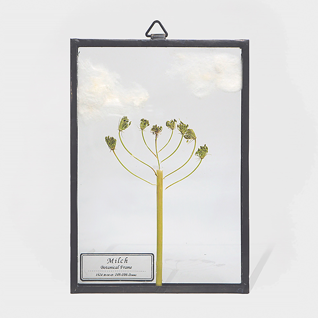 Botanical Frame S004(A_Black)
