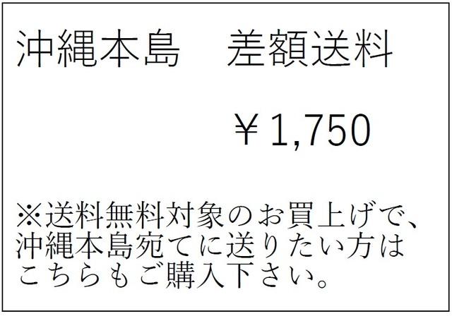 沖縄本島 差額運賃
