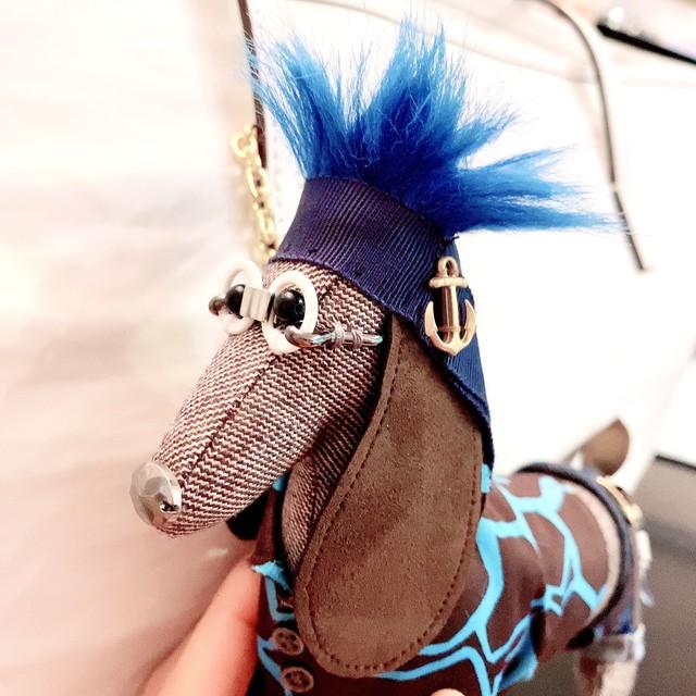 イヌ(RICK リック)茶×ブルー