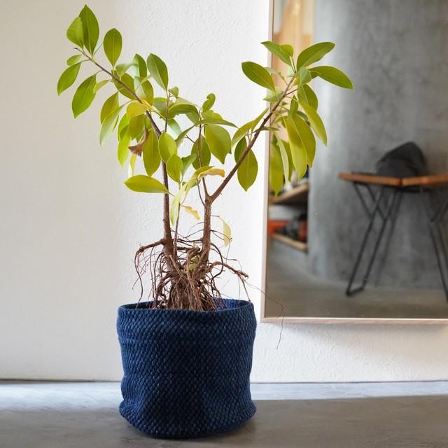 うしじま縫製 | 武州正藍染 鉢カバー【Mサイズ】 二重刺子