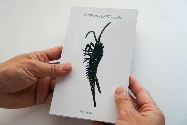 田中彰『JUMPING BRISTLETAIL』(作品集)
