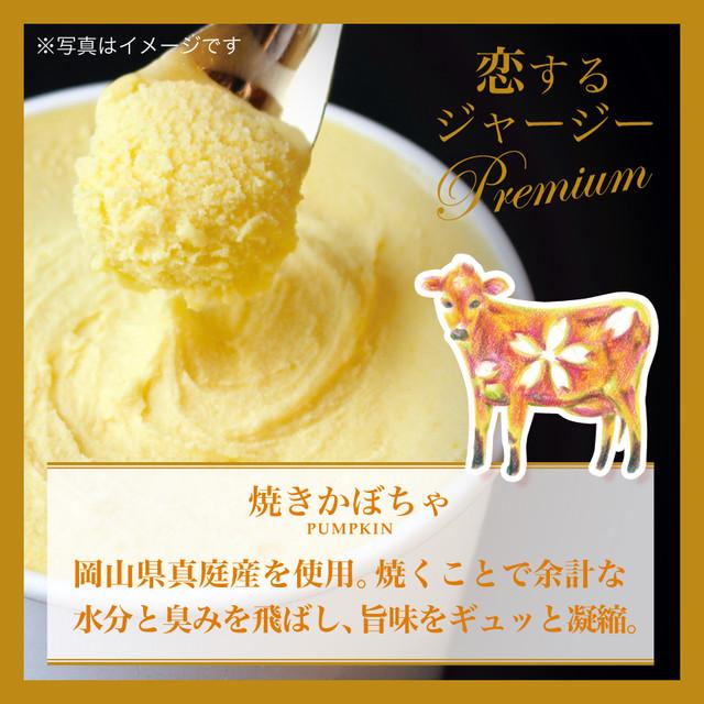 【g30】■6個×1種■Premium(オレンジチェリー)