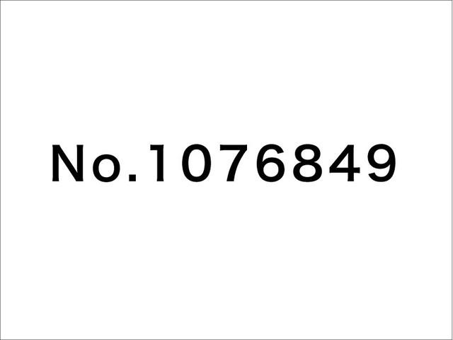 No.1076849 / 片岡メリヤス