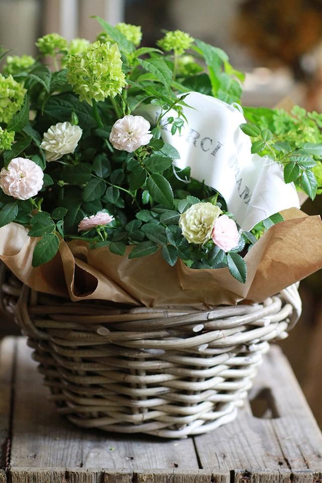 母の日*薔薇のブーケロン*¥10,000<送料込>