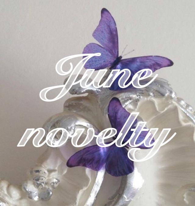 ❤︎ June novelty ❤︎