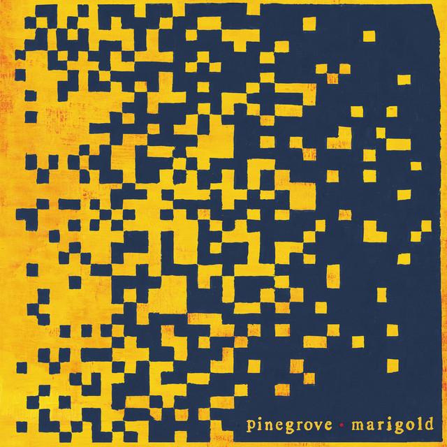 Pinegrove / Marigold(Ltd Yellow LP)