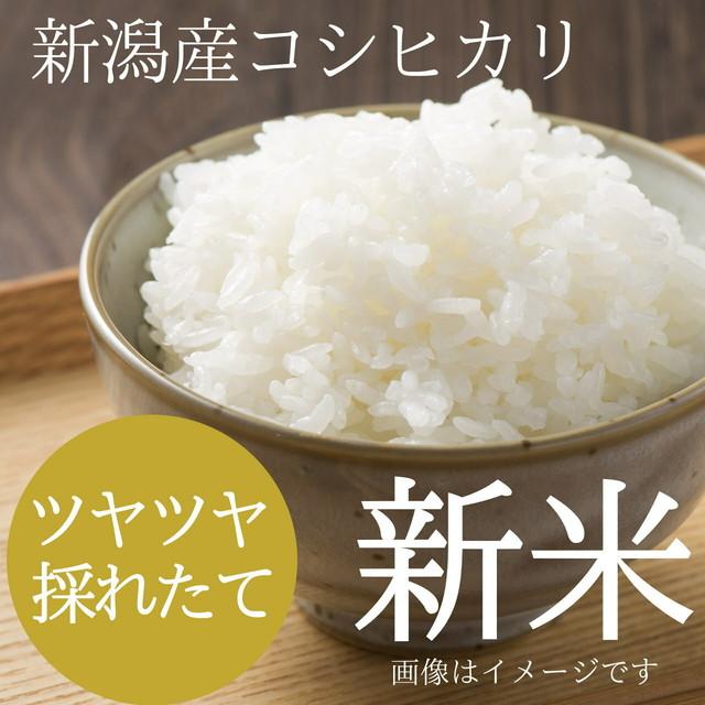 新米 新潟コシヒカリ 15kg (15キロ)新潟米 精白米 農家のお米 2019年 新潟県阿賀野産