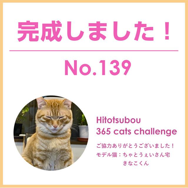 Hitotsubou 365 cats challenge No.139【ご協力者様限定販売】※ご購入の際はご注意事項がありますので説明欄をご確認ください。